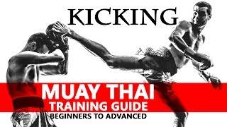Muay Thai Training Guide. Beginners to Advanced: Kicking