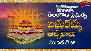 Bathukamma Sambaralu 2017   Telangana Govt Bathukamma 1st Day Celebrations    Floral Festival