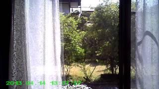 【小型カメラ】HobbyClub-「A-600」動体検知-3