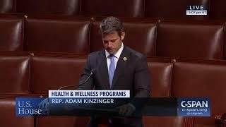 Rep. Kinzinger Floor Speech on HR 767