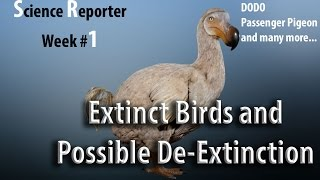 Some most popular recently Extinct Birds and possibilities of their De-Extinction