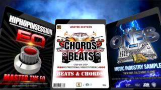 Reason 9 Propellerhead Drum Samples Mixing and Mastering for Hip Hop Instrumentals Type Beats drum