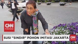 Menteri Susi: Masa Jakarta Gak Bisa Bikin Kayak Gini?