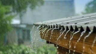 Beautiful rain in a village day