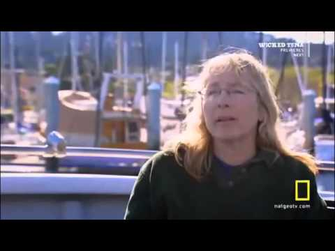 watch Killer Whale vs Great White Shark National Geographic Documentary Discovery HD