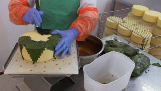 Stinging Nettle Cheese and Worlds Best Cheese - Cheese Slices S8 with Will Studd