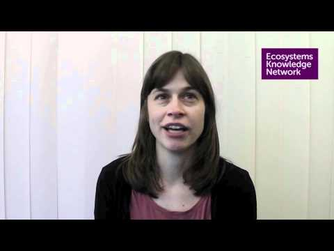 Susannah Gill: An ecosystems approach in the Mersey Forest