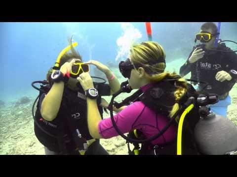 Xxx Mp4 PADI Open Water Diver Video 3gp Sex