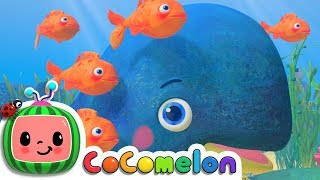 Baby Blue Whale Song - ABCkidTV