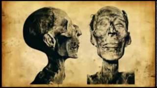 Pharaohs: God-kings of Egypt