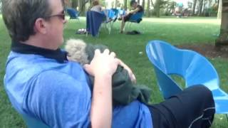 Man breastfeeding baby in New York City park