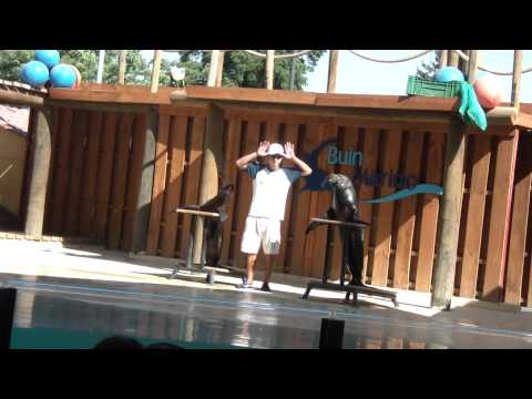 Show Marino Buin Zoo CHILE Full HD