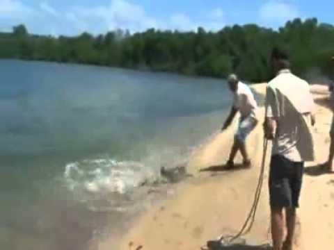 Senão filma se era mais uma história de pescador