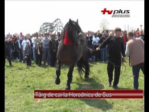 Targ de cai la Horodnicu de Sus