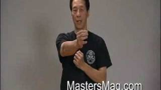 Wing Chun Chain Punch | By Sam Kwok