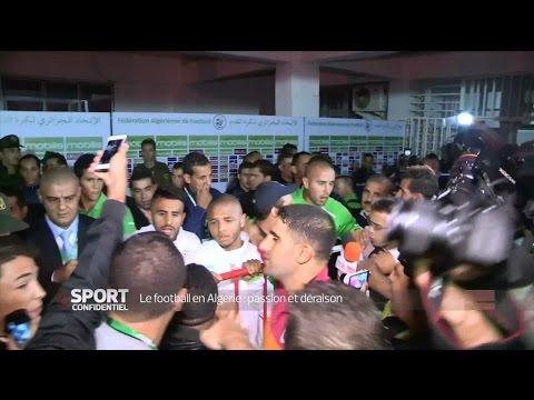Xxx Mp4 Le Football En Algérie Passion Et Déraison L Equipe 21 3gp Sex