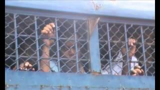 Savar Ashulia Dhamrai Bnp Arrest footage 23 10 13