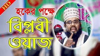 ইমানি হুংকারে নতুন ওয়াজ Bangla Waz Mahfil Maulana Mamun Hussine Habibi New Waz 2018