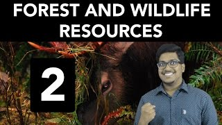 Geography: Forest and Wildlife Resources (Part 2)