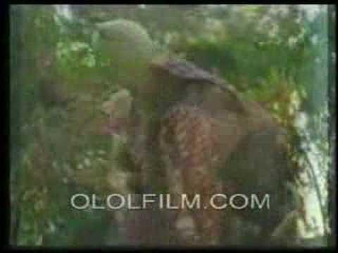 Xxx Mp4 Somali Ethio Video With Sado Caali 3gp Sex