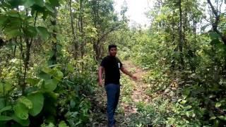 বাংলা ডিসকভারি ফান