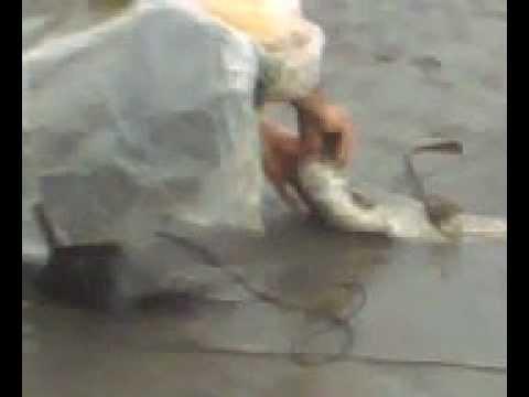 თევზაობა ღლავზე