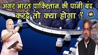 क्या भारत के किशनगंगा प्रोजेक्ट से डूब जाएगी पाकिस्तानी अर्थव्यवस्था?Indus Water Treaty in hindi