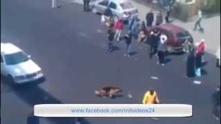فيديو خطير كلب يدافع عن صاحبه بشراسة بعدما تعرض لضرب من طرف شاب مهلوس