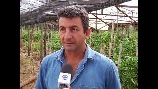 Agricultura familiar - 29/01/2016