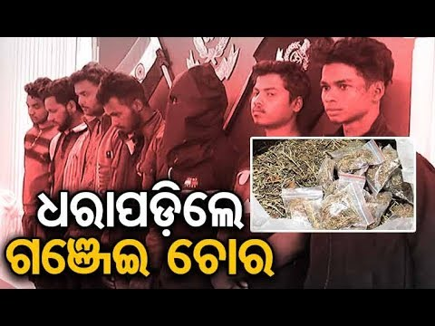 Xxx Mp4 Phulbani Police Arrests 7 Persons Including Minor For Stealing Marijuana 3gp Sex