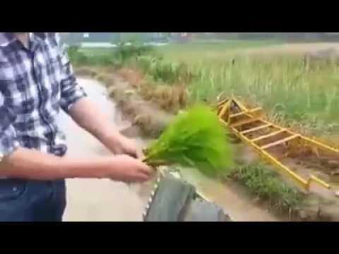 Xxx Mp4 Amrita HD Videos PRESENT Garhibishanpur LKR 3gp Sex