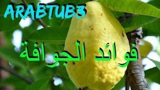 لمحة بسيطه عن فوائد الجوافة - ArabTub3