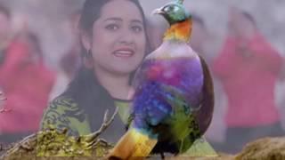 New Deuda Song 2073/2017/ Saun Ki Anari Rat_Vocal_Shova Thapa & Deepak Nepali