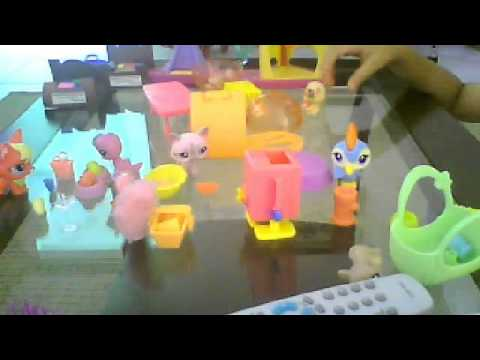 Vídeo da webcam de lps