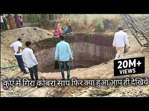 Xxx Mp4 कुएं में गिरा कोबरा साप फिर क्या हुआ देखिये इस वीडियो को Cobra Snake Rescue Shendi Ahmednagar 3gp Sex