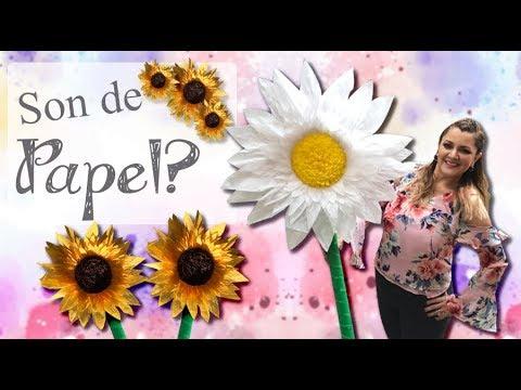 Xxx Mp4 🌻 Flores GIGANTES De Papel Súper Decorativas 🌼 Margarita Y Girasol De Papel Chuladas Creativas 3gp Sex