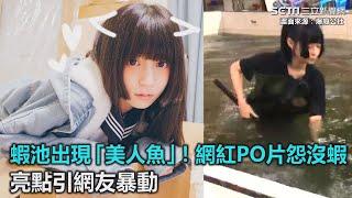 蝦池出現「美人魚」!網紅PO片怨沒蝦 亮點引起眾網友暴動|三立新聞網SETN.com