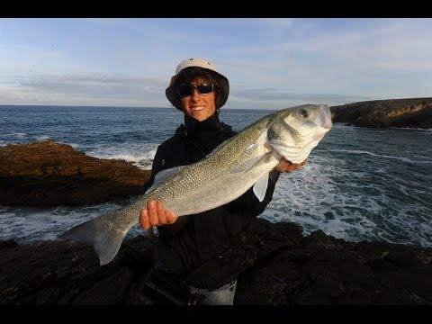 Comme sortir le poisson dans la pêche 1.6