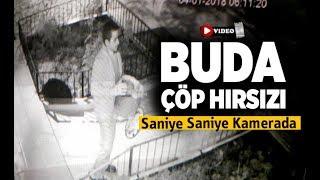 Buda çöp hırsızı, kameraya yakalandı - Denizli Haberleri - HABERDENİZLİ.COM