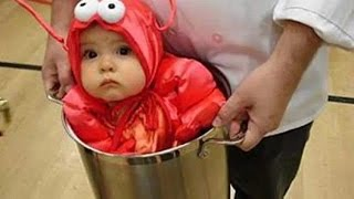 Funny random kids and animals failing at their best - Funny fail compilation