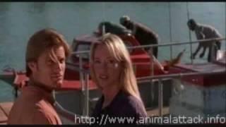 Movie Stills From Shark Attack (1999)