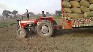 MF 260 Tractor 16 feet trolla