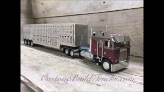 Purple Cabover with cattle pot trailer