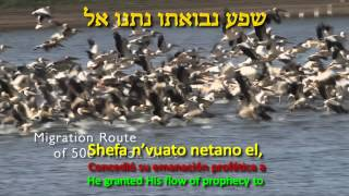 YIGDAL ELOHIM CHAI - יגדל אלוהים חי וישתבח - May the living Elohim become greater and be praised