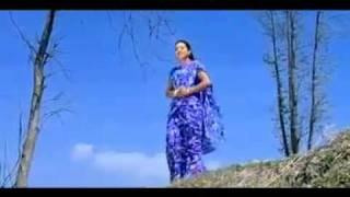Latest Nepali Lok Song 2010-Bipanima Atar Launa le HQ.flv