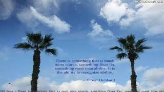 There is something that is much more scarce, something finer far, some