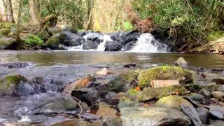 Nature Zen - 10 minutes of waterfall relaxation