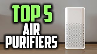 Best Air Purifiers in 2019   Remove All Pollutants From The Air