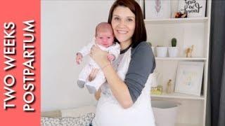 TWO WEEK POSTPARTUM UPDATE | Weight, Belly, Breastfeeding, and Hazel