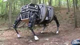 آخر ابتكارات الجيش الأمريكي. حصان آلي لحمل العتاد